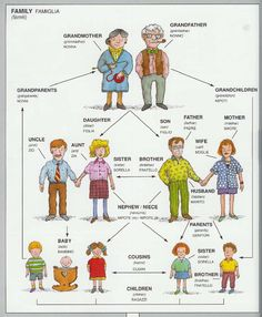 Italian vocabulary - Family