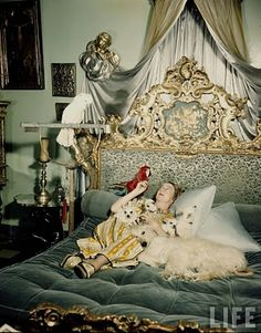 Portrait of Countess Phyllis della Faille de Leverghem in bedroom of her villa reclining on her ornately carved and tapestried bed, holding pet parrots, chihuahuas & afghan dog.   Location: Near Tangier, Morocco   Date taken: 1950   Photographer: Jack Birns
