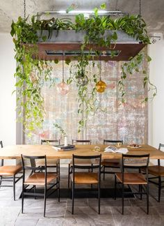Dining area with galvanised hanging garden & copper underside, glass pendants, in front of bespoke fabric wall covering in industrial mews house by Cooley & Rose Contemporary Interior Design, Hanging Plants, Rustic Design, Plant Decor, Outdoor Furniture Sets, Sweet Home, Interior Decorating, New Homes, House Design