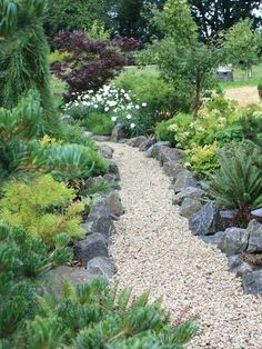 conifer garden ideas photo of a large traditional full sun backyard gravel garden path in other conifer garden design ideas australia