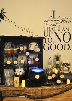 harry potter Potions Display