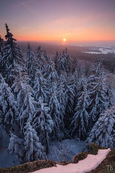 Winter sunset (Fichtel Mountains, Germany) by Thomas Buchmann / 500px