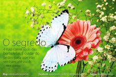 """""""O segredo é não correr atrás das borboletas. É cuidar do jardim para que elas venham até você."""" Mário Quintana - Veja mais sobre Espiritualidade & Autoconhecimento no blog: http://sobrebudismo.com.br/"""