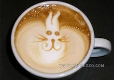 Fat cat or fluffly bunny in the cafe latte Coffee Barista, Coffee Milk, Coffee Latte, I Love Coffee, Coffee Cups, Coffee Drinks, Cappuccino Art, Coffee Artwork, Fluffy Bunny