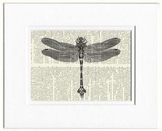 dragonfly I vintage artwork printed on vintage by FauxKiss on Etsy