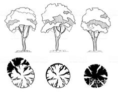 Výsledek obrázku pro LANDSCAPE Landscape Architecture Drawing, Architecture Graphics, Landscape Drawings, Ancient Architecture, Landscape Design, Sketch Architecture, Architecture Images, Cultural Architecture, Tree Sketches