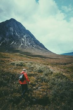 Into the Wild with Greatbigwhale | iGNANT.de