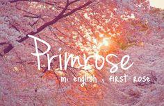 Primrose - baby girl name!