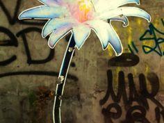 pisingallo.tumblr.com