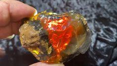 Minerals And Gemstones, Raw Gemstones, Rocks And Minerals, Glass Gemstone, Rocks And Gems, Earth Science, Geology, Natural Stones, Oregon