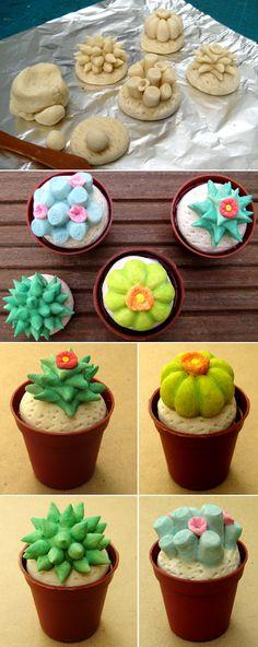 Ces cactus-là non plus n'ont pas besoin de beaucoup d'arrosage !