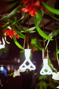 plumen - industrial vs organic