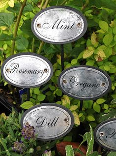 Herb Stake Markers