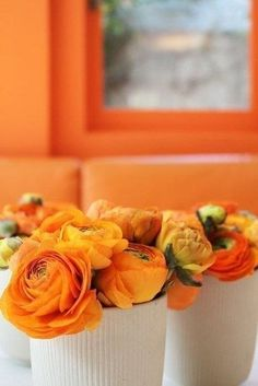Potted ranunculus for tables! Great idea!