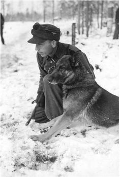 Waffen-SS in Norway, here is an SS-Sturmmann with German Shepherd Dog during the dog's training, 1940.