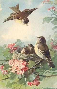 Vintage postcard by suemat