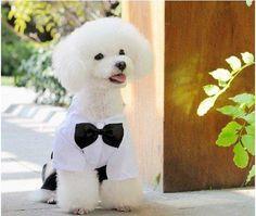 выход фабрики! мода джентльмен дизайн одежды собаки питомец костюм с галстуком-бабочкой