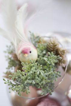 Close-up of bird sitting on pink and green succulents, and pink baubles in a clear round vase. Pink and Green. Photo Credit : A. Mordant - Click to read full instructions on how to do here: http://www.wedotahiti.com/how-to-decorate-a-winter-themed-table #tahitiweddingplanner #tahitiweddingpackage