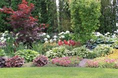 Love this garden lining the backyard. Gorgeous colors & layering.