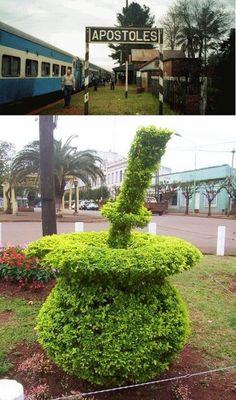 Mate vegetal. Apóstoles es una ciudad argentina, cabecera del departamento de Apóstoles en el sur de la provincia de Misiones. Argentina