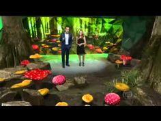 Jornada da Vida ▶ Fungos - YouTube
