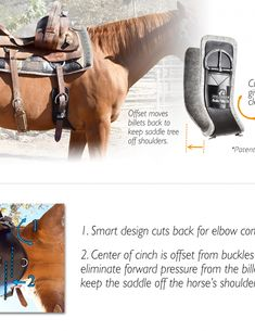 The Shoulder Relief Cinch™ improves saddle fit, provides elbow clearance and increases horse comfort! See the full description below. Horse Anatomy, Horse Stalls, Horse Care, Saddles, Horseback Riding, Horse Riding, Beautiful Horses, Horse Stuff, Inner Peace