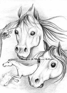 Dibujos cabezas de mujer volti femminili pinturas for Disegni di cavalli a matita