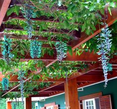 Pergola For Sale Lowes