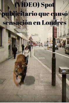 ¿Te imaginas ver a un tigre por la calle que se acerca a tí?Así se sintieron algunos londinenses como puedes comprobar en el vídeo