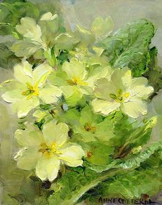 Primroses | Mill House Fine Art – Publishers of Anne Cotterill Flower Art