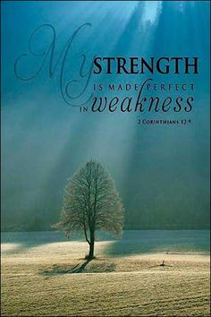 "2 Corinthians ~ But he [Jesus] said to me, ""My grace is sufficient for you, for my power is made perfect in weakness."" Therefore I will boast all the more gladly of my weaknesses, so that the power of Christ may rest upon me. Scripture Verses, Bible Verses Quotes, Bible Scriptures, Healing Scriptures, Scripture Pictures, Word Pictures, Faith Quotes, Favorite Bible Verses, Christian Inspiration"