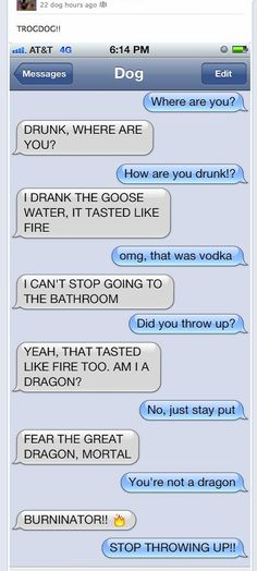 Texts From Dog - Dog gets drunk
