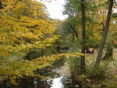 Schlosspark Charlottenburg, Inspiration für 'Der Geschmack von Liebe', mehr hier: https://carolawolff.de/die-buecher/pippa-arden-der-geschmack-von-liebe/
