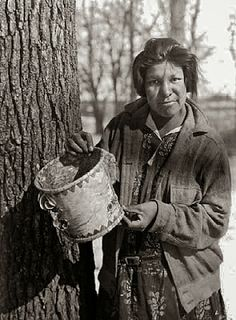 Ojibwa Indian girl Collecting maple Syrup