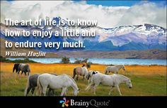 Quote of the Day March 29th - BrainyQuote