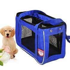 BeautyMood Deluxe Foldable Soft Sided Travel Pet Makes Your Pet Feel Comfy Great Portable Dog House M Blue *** Details can be found by clicking on the image.(This is an Amazon affiliate link and I receive a commission for the sales)