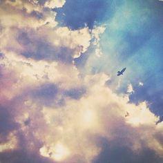 elsymay -instagram