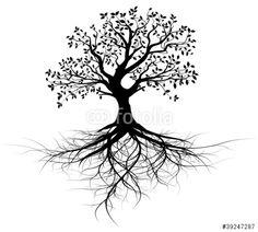 Vecteur : vecteur série, arbre avec racines vectoriel noir