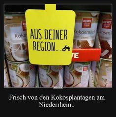 Frisch von den Kokosplantagen am Niederrhein..   Lustige Bilder, Sprüche, Witze, echt lustig