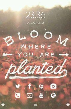 [Homepack Buzz] Bu şahane anaekranı görmelisin! omerbayer | My Homepack Bloom.Love.Travel.