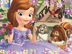 30 pcs - Roses / Disney Sofia the First Legpuzzel
