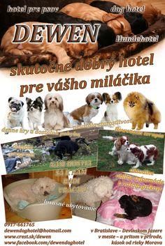 dewen hotel pre psov Movies, Movie Posters, Films, Film Poster, Cinema, Movie, Film, Movie Quotes, Movie Theater