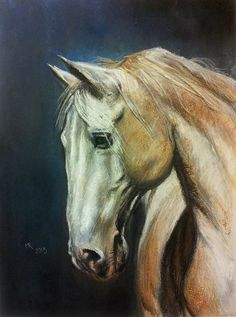 The grey horse finally finished - soft pastels and some water, 30x40 cm, based on the photo made by Mrs. Marta Nowakowska