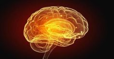 Contrary to conventional wisdom, brain regeneration is possible. One promising therapy that promotes neurogenesis and is effective in pre-clinical studies of Alzheimer's and Parkinson's is near infrared light therapy, and it may improve other mental illnesses and neurodegenerative disorders including dementia, stroke, ALS, and traumatic brain injury as well