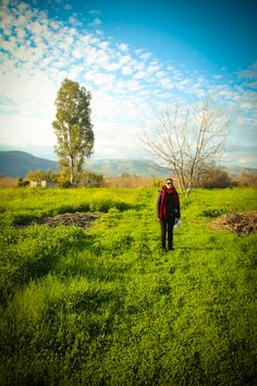 winter flowers in Argos Rainy Weather, Winter Flowers, Summer Winter, Argos, Sunny Days, Greece, Mountains, Nature, Photos