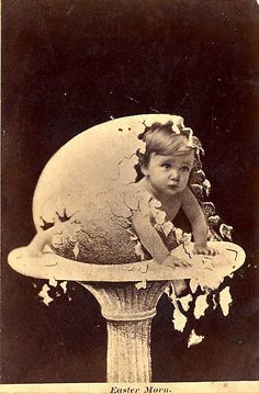 'Baby Hatching from Egg' Unattributed photographer. Gelatin silver print, x in. via The Metropolitan Museum of Art, NYC Antique Photos, Vintage Photographs, Vintage Images, Old Pictures, Old Photos, Collages, Hatch Baby, Photocollage, Egg Art
