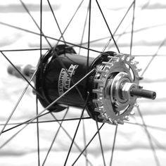 2-speed Sturmey-Archer meets Gates Carbon Drive  www.nuabikes.com