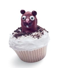 Cute Groundhog's Day cupcakes from the Family Fun Magazine. I've made these for years! Try it - worth the work, and so fun!