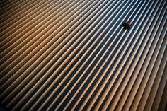 Steel lines   Julian Millo