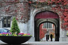 The National University of Ireland, Galway had an amazingly beautiful campus.
